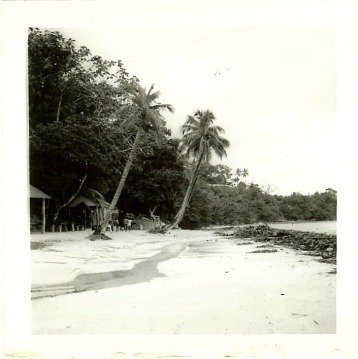 i finally decided on this photo of the beach. It has a greenish hue to it so I changed to black and white in PicMonkey.