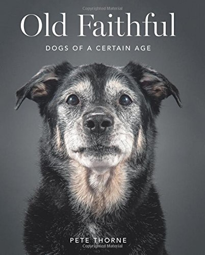 Old-Faithful-Dogs-of-a-Certain-Age