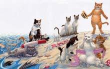 castawaycats_small