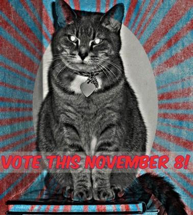 agnes-vote