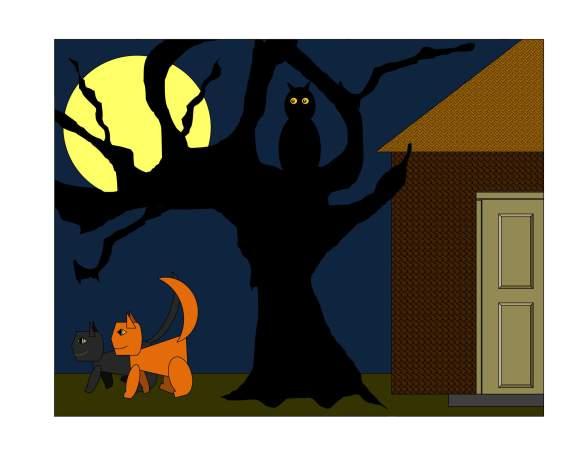orange-black-pumpkin-patch_0012