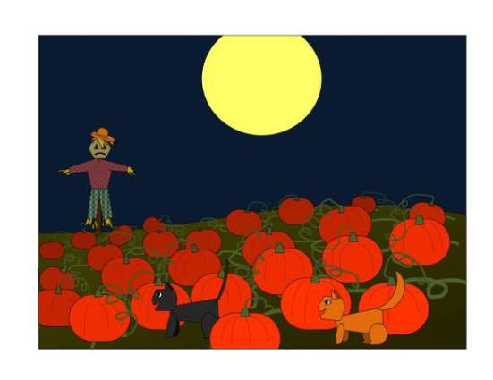 orange-black-pumpkin-patch_0022
