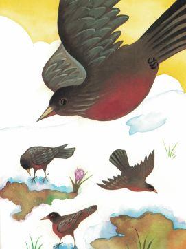 bird-e