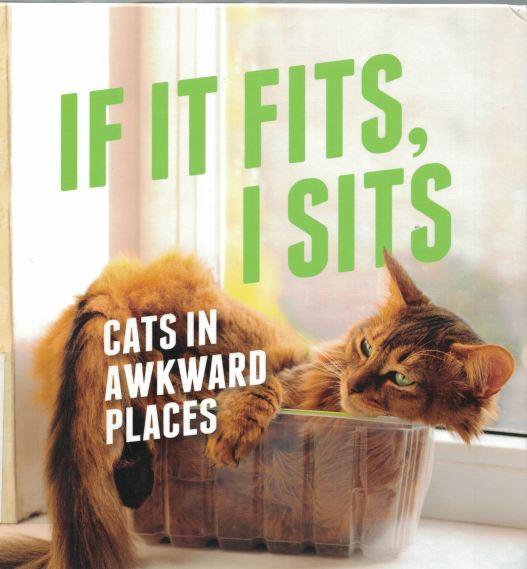 if-it-fits
