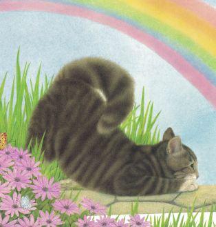 kittycat lullaby b