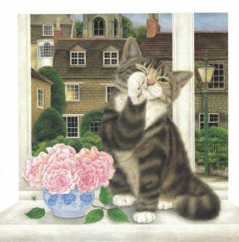 kittycat lullaby d