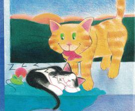 nat the cat d