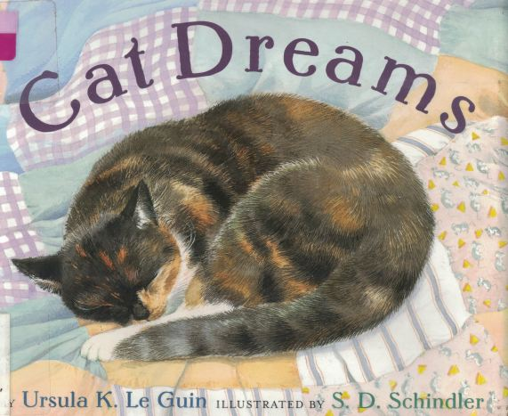 cat dreams a