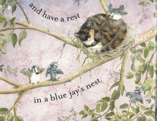 cat dreams c