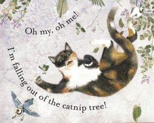 cat dreams d