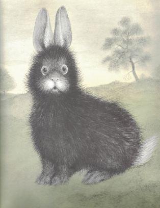 the rabbits wedding c