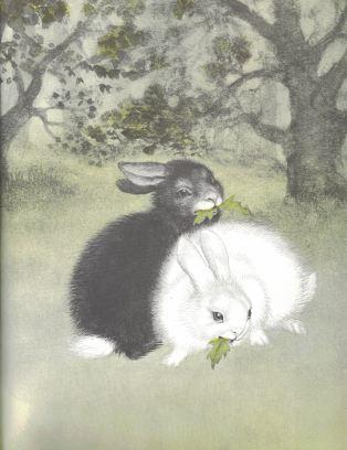 the rabbits wedding e