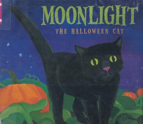 moonlight a