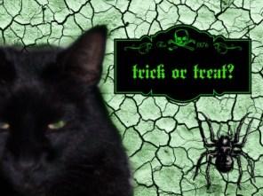 witch-simon