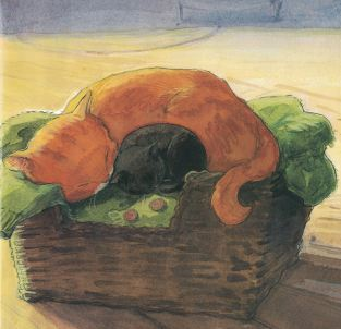 pumpkin cat e