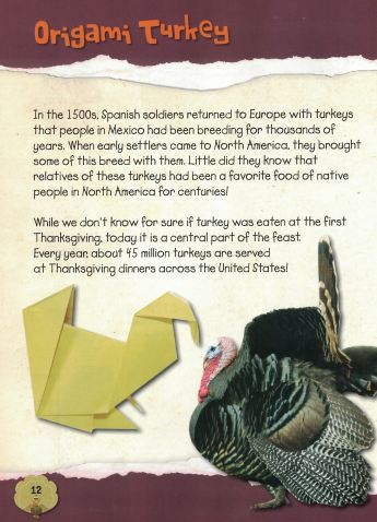 thanksgiving origami d