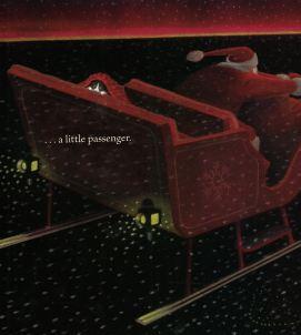 stowaway c