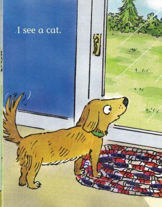 i see a cat b